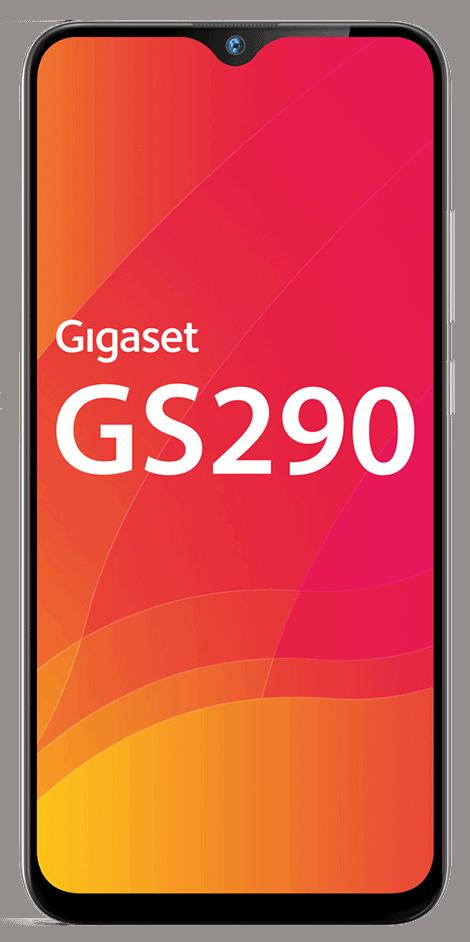 gs290